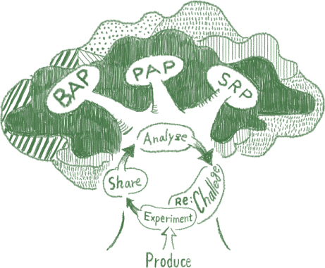 BAP PAP SRP Analyse Re:Challege Experiment Share Product
